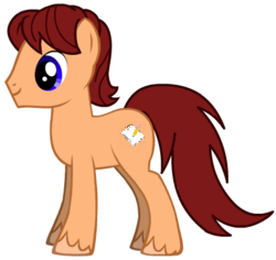 Me as a Pony with Cutie Mark