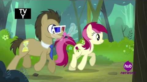 Doctor Whooves and Rose