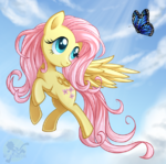 Fluttershy with a butterfly