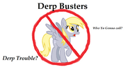 Derp Busters