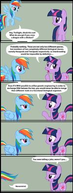 Rainbow Dash tells a joke