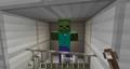 Zombie Confinement.png