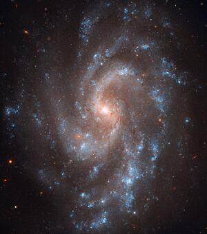 NGC5585large