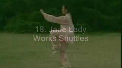 Tai Chi 24 Form, with English Titles