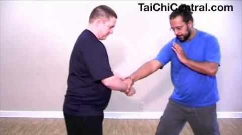 Tai Chi 10-form Part 5 Cloud Hands