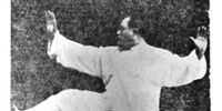 Heel Kick (Taijiquan Movement)