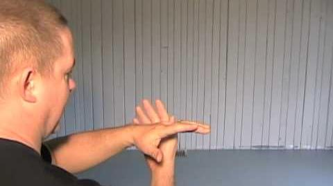 24 Form Tai Chi - Lesson 5 - White Crane Spreads its Wings