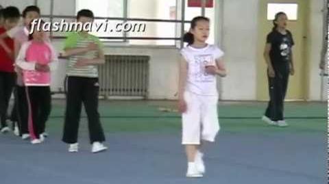 Wushu Slapkick Training