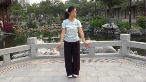 """QIGONG Shaolin """" BaDuanJin """" ( 8 pieces of Brocade ) performed by Fanny Ng with a New Age Music!"""