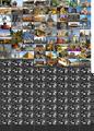 Thumbnail for version as of 18:12, November 11, 2015