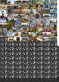 Thumbnail for version as of 06:58, November 13, 2015