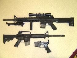 AR-15 models