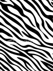 Zebra-stripes-pattern