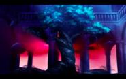 Water Tree 5