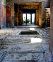 Proculus atrium courtesy VROMA