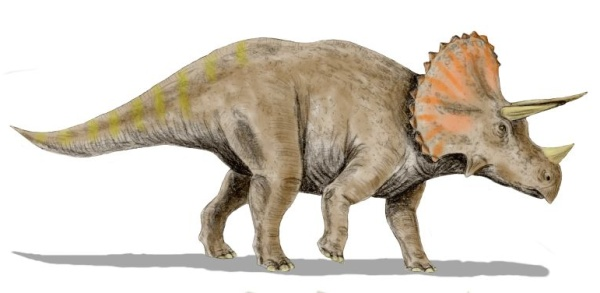 File:Dinosaur8878.jpg