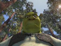 Shrek angryshrek