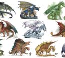 Metallic Dragons