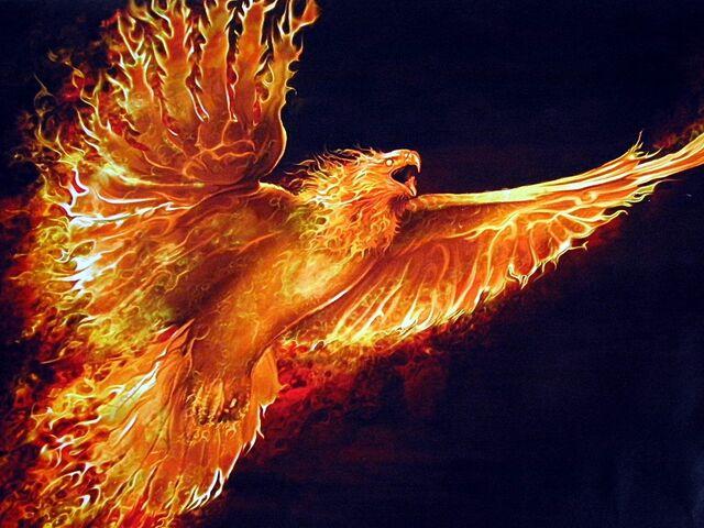 File:Flying Phoenix.jpg