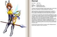 102-103 Hornet