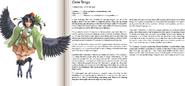 Crow Tengu book profile