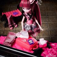 Diorama - Draculaura's going for traveling