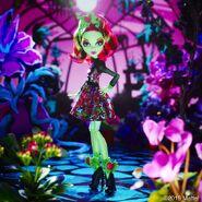 Diorama - Venus's here