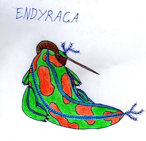 File:Endyraga.jpg