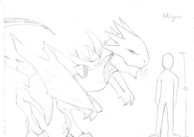 File:Birdwyvern(unnamed).jpg