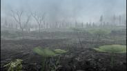 MHF1-Swamp Screenshot 035