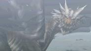 KushalaDaoraHomewolf01