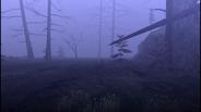 MHF1-Swamp Screenshot 012