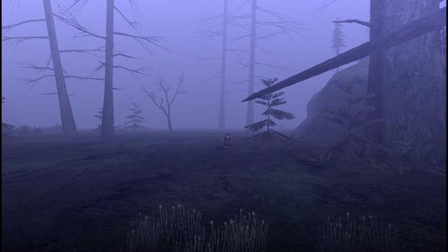 File:MHF1-Swamp Screenshot 012.png