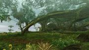 MHFU-Great Forest Screenshot 006
