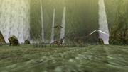 MHFU-Old Jungle Screenshot 046
