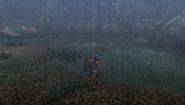 MHFU-Forest and Hills Screenshot 026