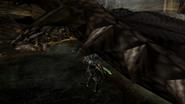 MHP3-Silver Rathalos Screenshot 006