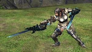 Dual Swords