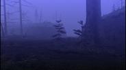 MHF1-Swamp Screenshot 006