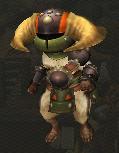 Doboruberuku armor