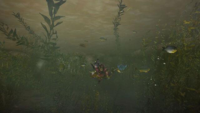 File:MH3U HD Flooded Forest.jpeg