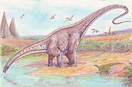 Apatosaurus33