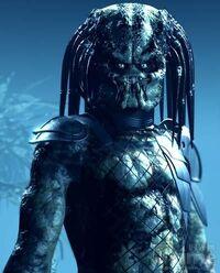 Predator22222