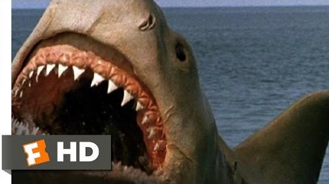Jaws The Revenge (8 8) Movie CLIP - Killing the Beast (1987) HD