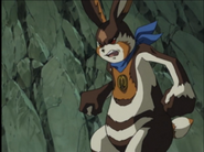 Wild hare from the anime