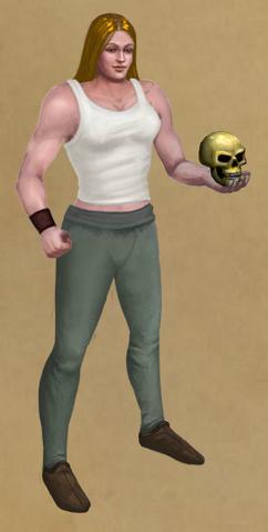 File:Scholar's Skull.png