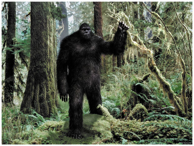 File:Bigfootw.jpg