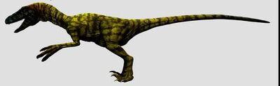 Deinonychus 13