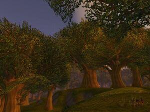 800px-Elwynn Forest
