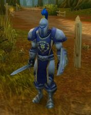 Elwynn Soldier